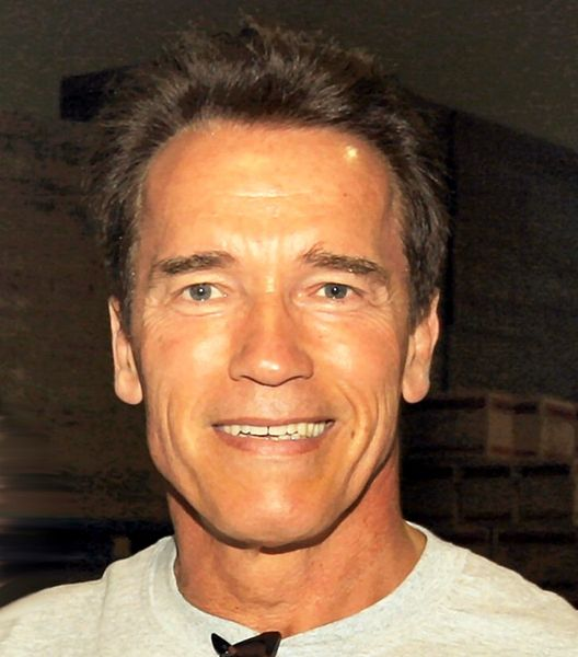 528px-Arnold_Schwarzenegger_edit(ws)