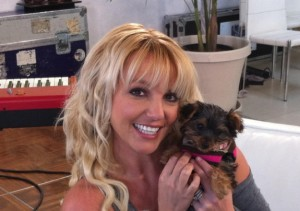 Britney-Spears-with-her-puppy-Hannah